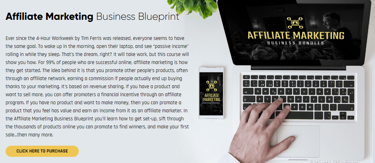 affiliate marketing business blueprint