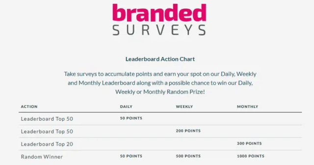 How To Make Money With Branded Surveys?