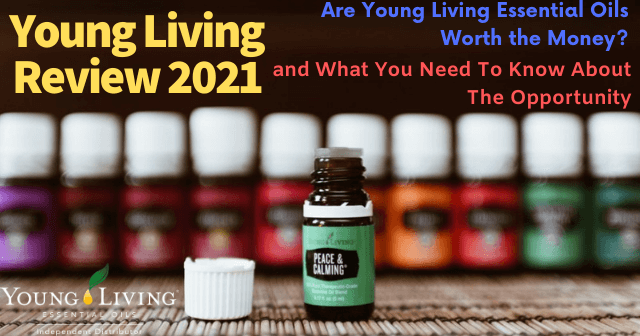 Young Living Review Are Young Living Essential Oils Worth The Money?