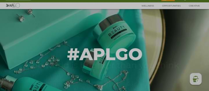what is aplgo about website